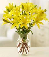 Sunshine Gifts toIndia, sparsh flowers to India same day delivery