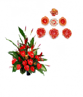 Red Flowers  with Diyas and Rangoli Gifts toOjhar, Combinations to Ojhar same day delivery