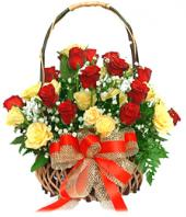24 Yellow and Red Roses Gifts toShanthi Nagar, flowers to Shanthi Nagar same day delivery