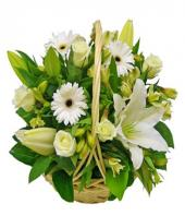 Elegant Love Gifts toHBR Layout, flowers to HBR Layout same day delivery