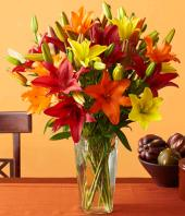 Colour Fiesta Gifts toHBR Layout, flowers to HBR Layout same day delivery