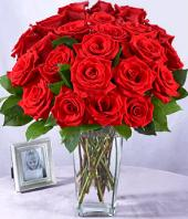 24 Red Roses Gifts toGanga Nagar, flowers to Ganga Nagar same day delivery