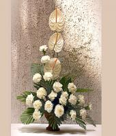 Elegance in White Gifts toHyderabad, flowers to Hyderabad same day delivery