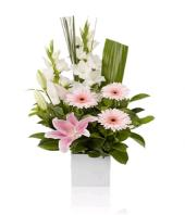 Pink Purity Gifts toLalbagh, flowers to Lalbagh same day delivery
