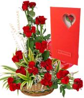 Regal Red Gifts toDomlur, flowers to Domlur same day delivery