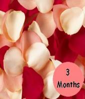 3 Months of Flowers Gifts toBrigade Road, flower every month to Brigade Road same day delivery