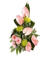 Fantasia Gifts toPuruswalkam, sparsh flowers to Puruswalkam same day delivery