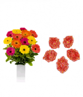 Color full Flowers and Floral Designed Earthen Diyas Gifts toOjhar, Combinations to Ojhar same day delivery