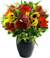 Seasons Best Gifts toHAL, Flowers to HAL same day delivery
