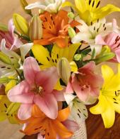 Colourful Bliss Gifts toMylapore, flowers to Mylapore same day delivery