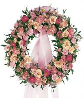 Wreath Peace Gifts toJayamahal, sparsh flowers to Jayamahal same day delivery