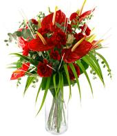 Burning Desire Gifts toAgram, flowers to Agram same day delivery