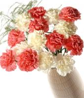 Pink and White Carnations Gifts toRT Nagar, flowers to RT Nagar same day delivery
