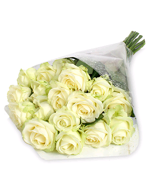 15 Luxury white roses