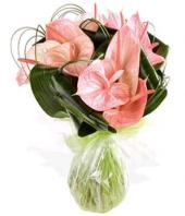 Pink Paradise Gifts toHBR Layout, flowers to HBR Layout same day delivery